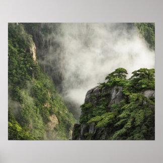 Niebla entre los picos y los valles del Gran Cañón Póster