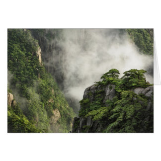 Niebla entre los picos y los valles del Gran Cañón Tarjeta De Felicitación