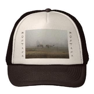 Niebla escarchada de la mañana en el gorra de Mont