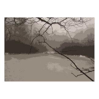 Niebla mística sobre el ATC del pantano Tarjeta De Visita