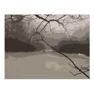 Niebla mística sobre la postal del pantano