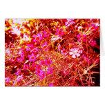 Niebla rosada y anaranjada alterada de la flor tarjeta de felicitación