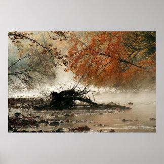 Niebla y color impresiones