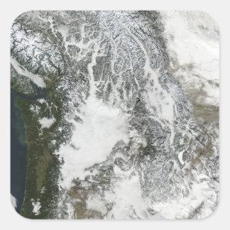 Niebla y nieve en el noroeste pacífico (col pegatina cuadrada
