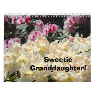 Nieta del Sweetie del calendario de Photograhpy de