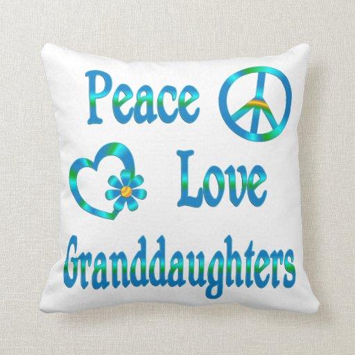 Nietas del amor de la paz almohada