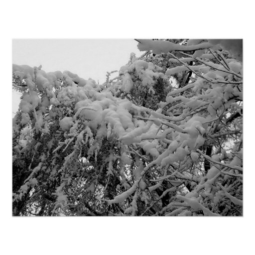 Nieva #2 póster