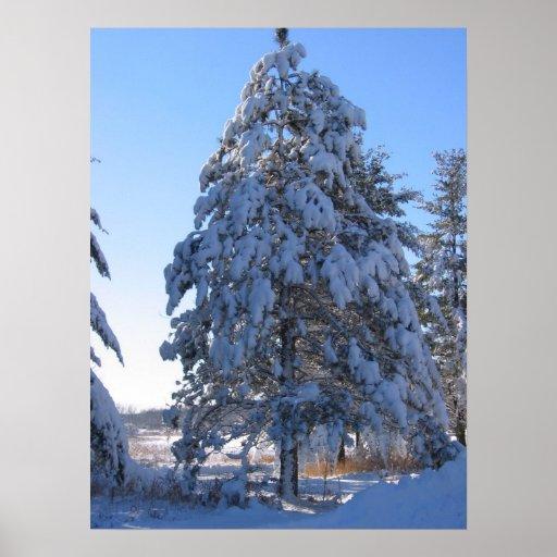 Nieve 13 impresiones