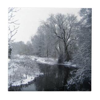 Nieve Azulejo Cuadrado Pequeño
