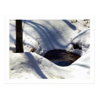 Nieve bien en las maderas postales