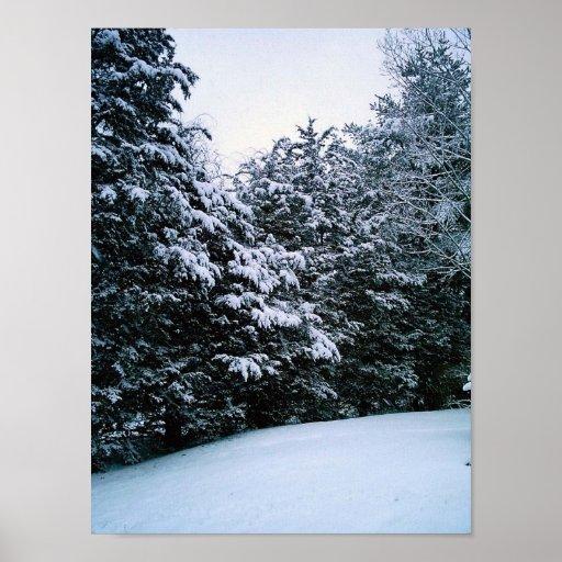 Nieve, Burrillville, RI Posters