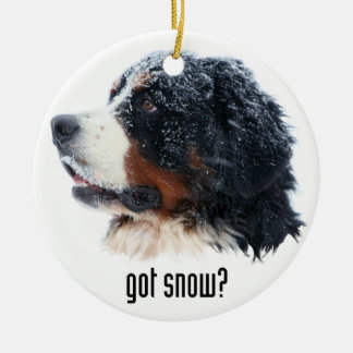 ¿nieve conseguida? Perro de montaña de Bernese Adorno Navideño Redondo De Cerámica
