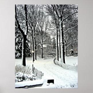 Nieve de Central Park 2010 - CIMG6446 Póster