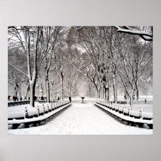 Nieve de Central Park 2010 - CIMG6496 Posters
