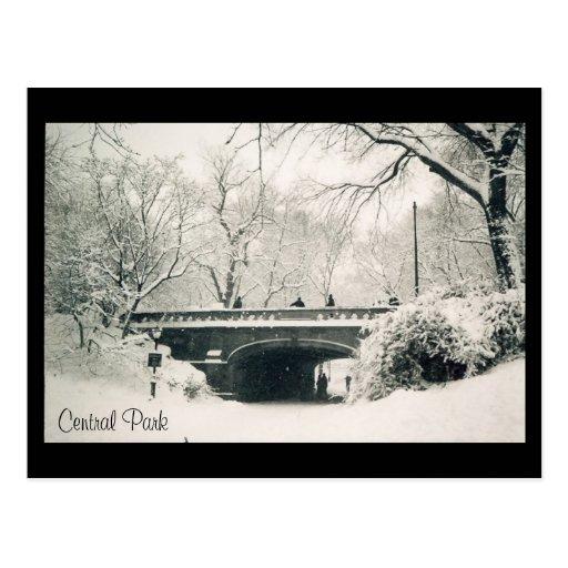 nieve de Central Park Postales