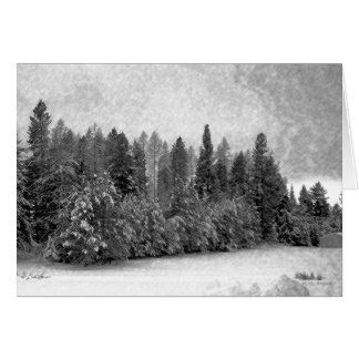 Nieve de Idaho Tarjeta De Felicitación