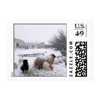 Nieve de las ovejas en abril timbres postales