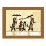 Nieve de los paraguas de los gatos del vintage postales