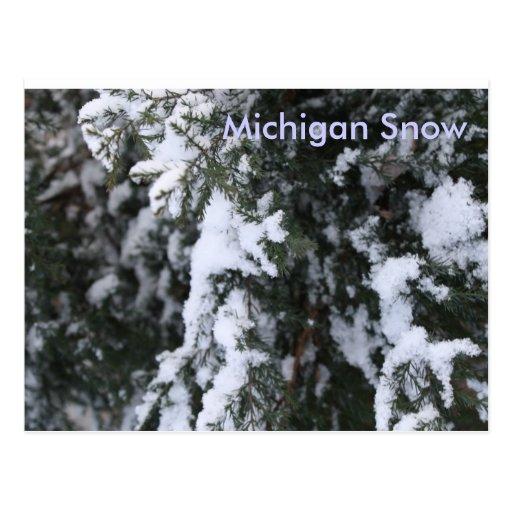 Nieve de Michigan Postal