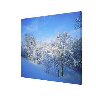 Nieve de registro en Louisville, Kentucky Impresiones En Lona