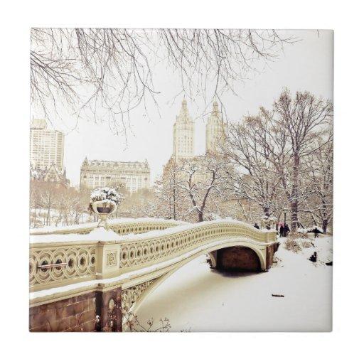 Nieve del Central Park - invierno Nueva York Teja