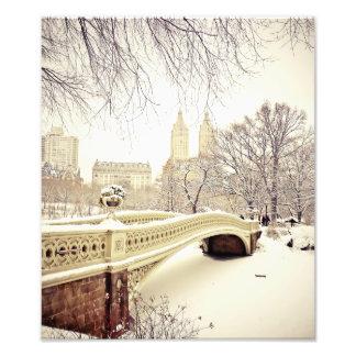 Nieve del Central Park - invierno Nueva York Fotografías