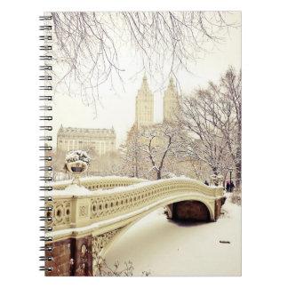 Nieve del Central Park - invierno Nueva York Libros De Apuntes
