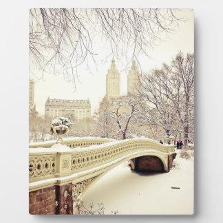 Nieve del Central Park - invierno Nueva York Placa De Madera