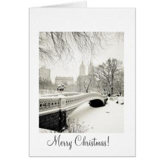 Nieve del Central Park - navidad Tarjeta De Felicitación