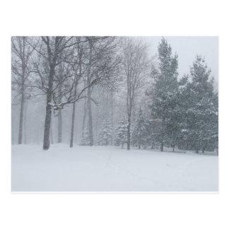 Nieve del invierno de Michigan MI en la escena de Tarjetas Postales