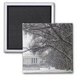 nieve del invierno del Lincoln memorial Iman