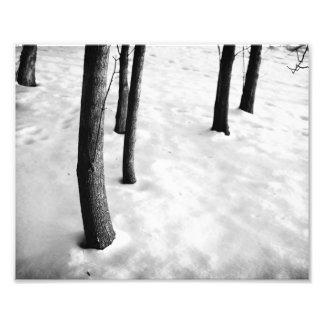 Nieve del invierno fotografías