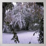 Nieve del invierno poster