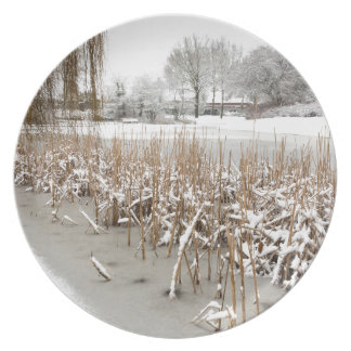 Nieve e hielo en el agua de la charca platos para fiestas