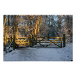 nieve e impresión de la lona de la luz del sol posters