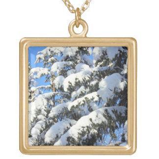 Nieve en árboles de hoja perenne joyerías