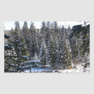 Nieve en árboles de hoja perenne pegatina rectangular