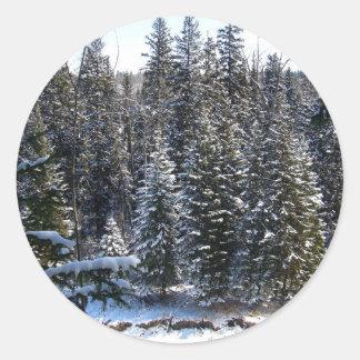 Nieve en árboles de hoja perenne pegatina redonda