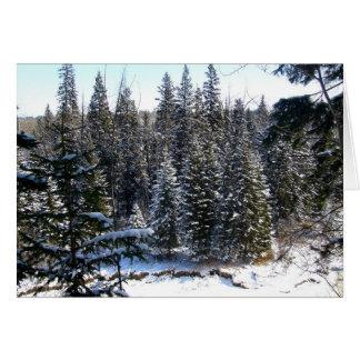 Nieve en árboles de hoja perenne tarjeta de felicitación