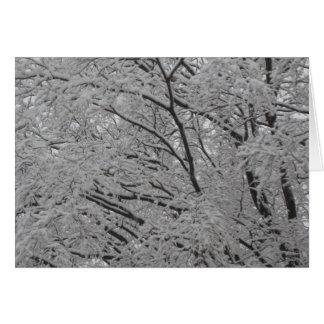 Nieve en arce japonés tarjeta de felicitación