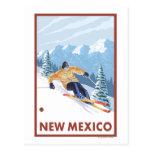 Nieve en declive SkierNew México Tarjetas Postales