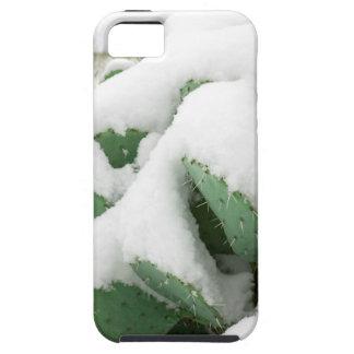 Nieve en el desierto funda para iPhone SE/5/5s