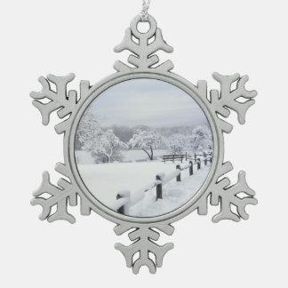 Nieve en el ornamento del estaño del ~ del parque adorno