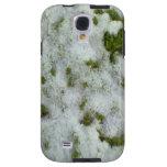 Nieve en hierba