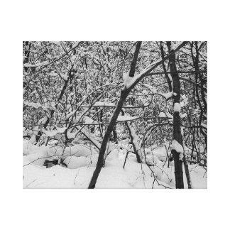 Nieve en la foto blanco y negro de los árboles en  impresiones de lienzo
