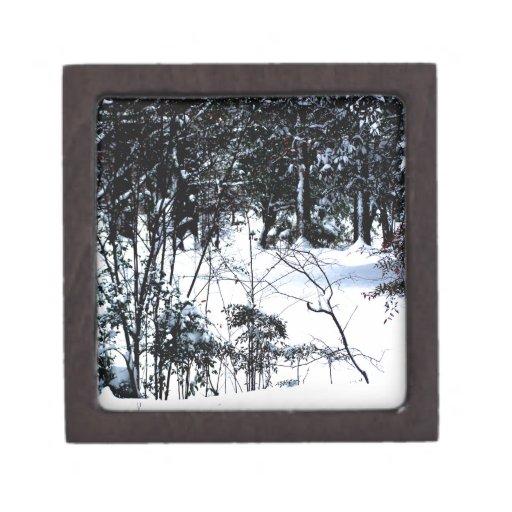 Nieve en las maderas cajas de recuerdo de calidad