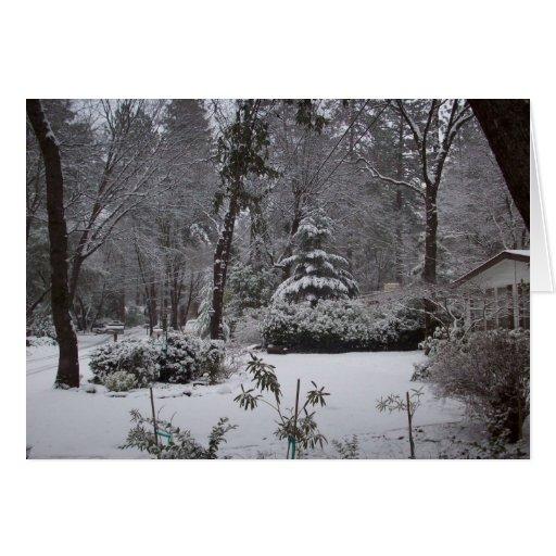Nieve en paraíso tarjeta pequeña