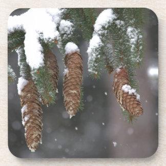 Nieve en pino posavasos de bebida