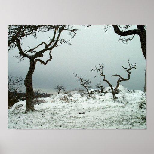 Nieve en prado del roble de Garry Póster