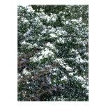 Nieve en un árbol de acebo comunicados personalizados